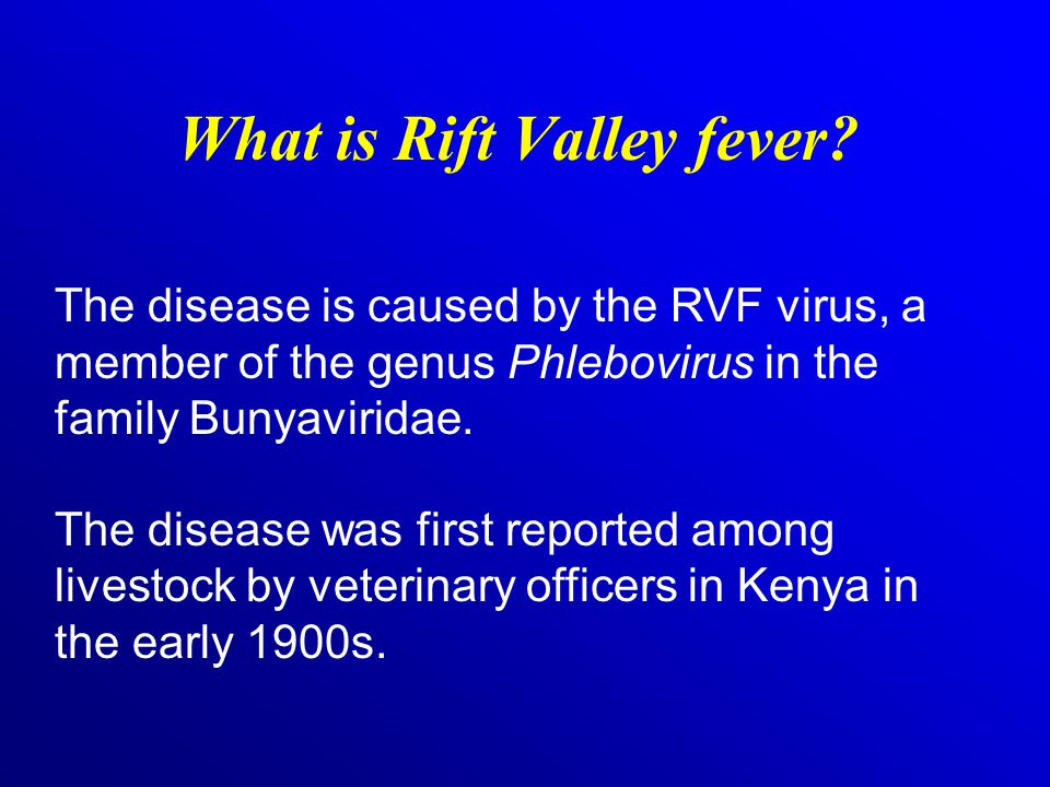 What is Rift Valley fever