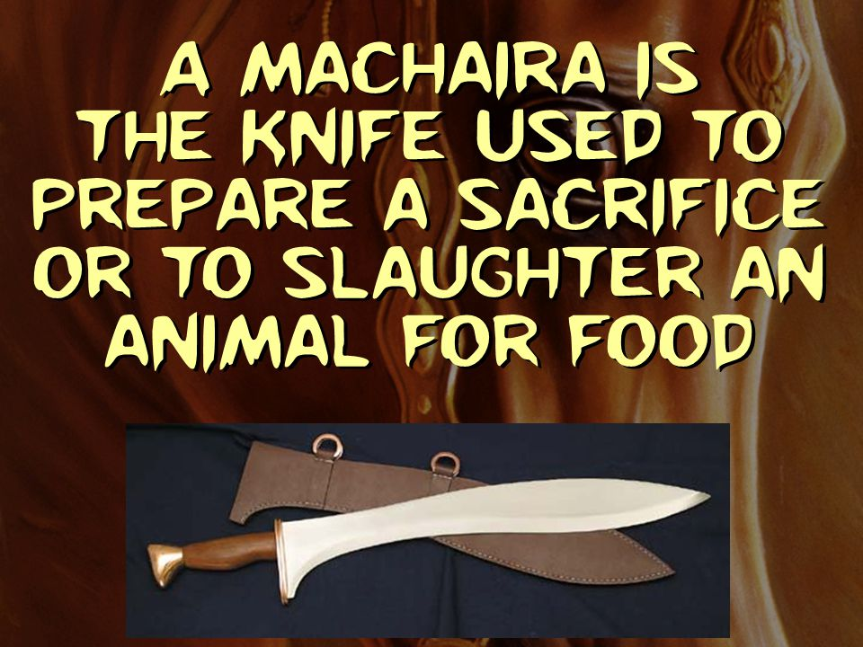 A Machaira is the knife used to prepare a sacrifice or to slaughter an animal for food