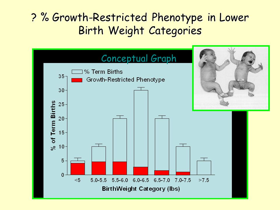 % Growth-Restricted Phenotype in Lower Birth Weight Categories