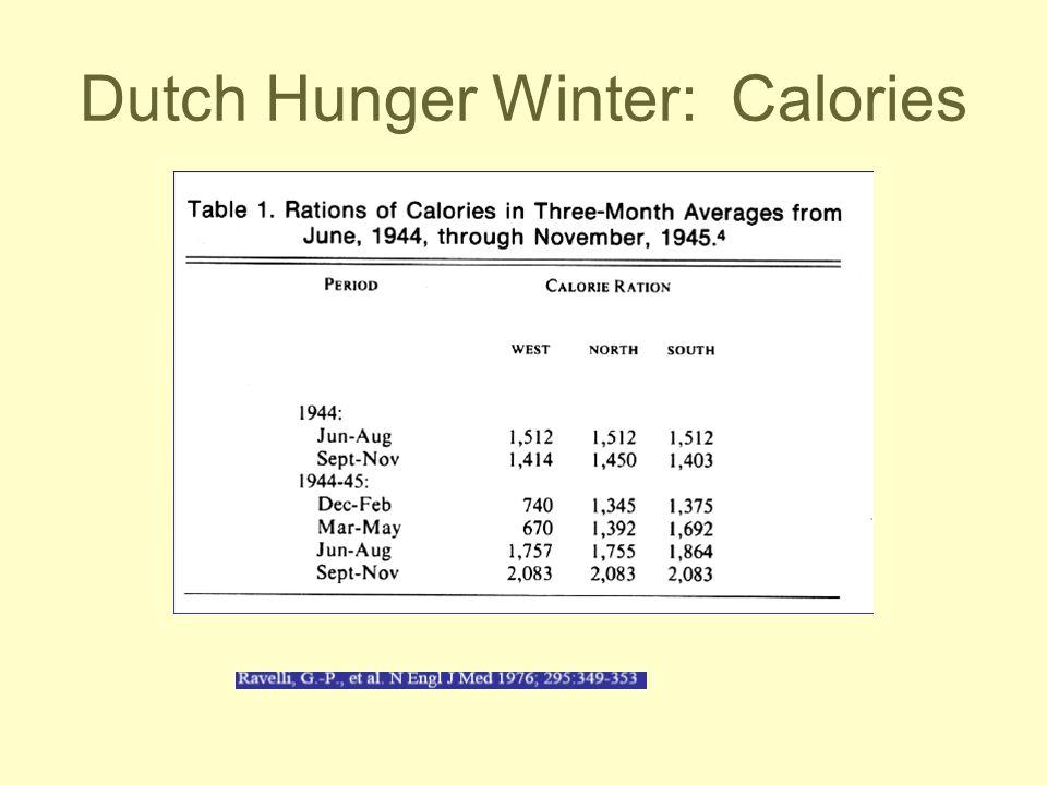 Dutch Hunger Winter: Calories