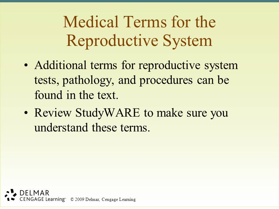 Medical Terms for the Reproductive System