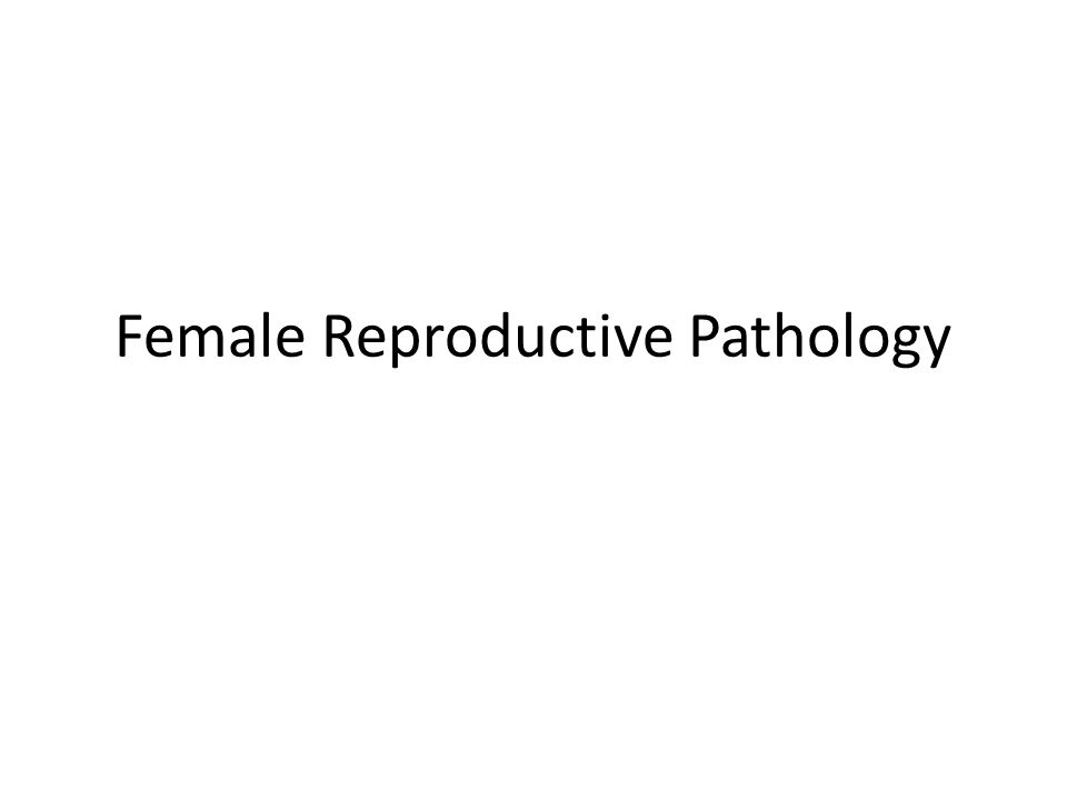 Female Reproductive Pathology