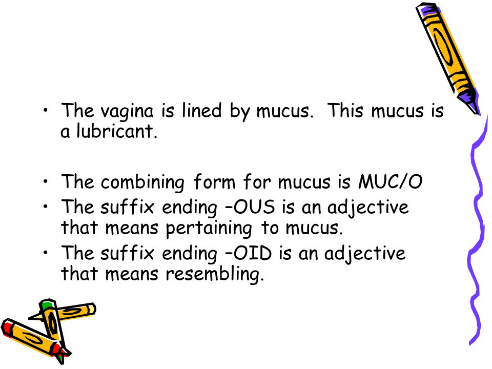 The vagina is lined by mucus. This mucus is a lubricant.