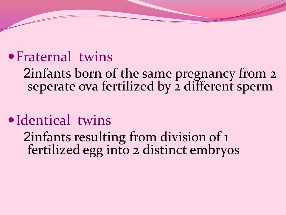 Fraternal twins Identical twins