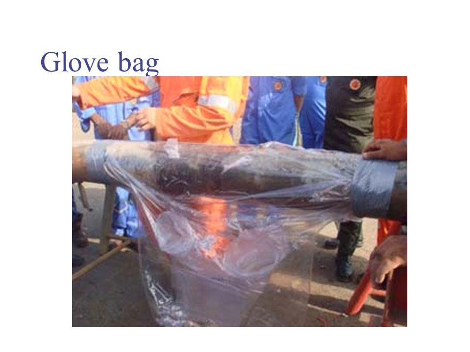 Glove bag