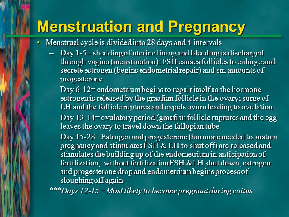 Menstruation and Pregnancy