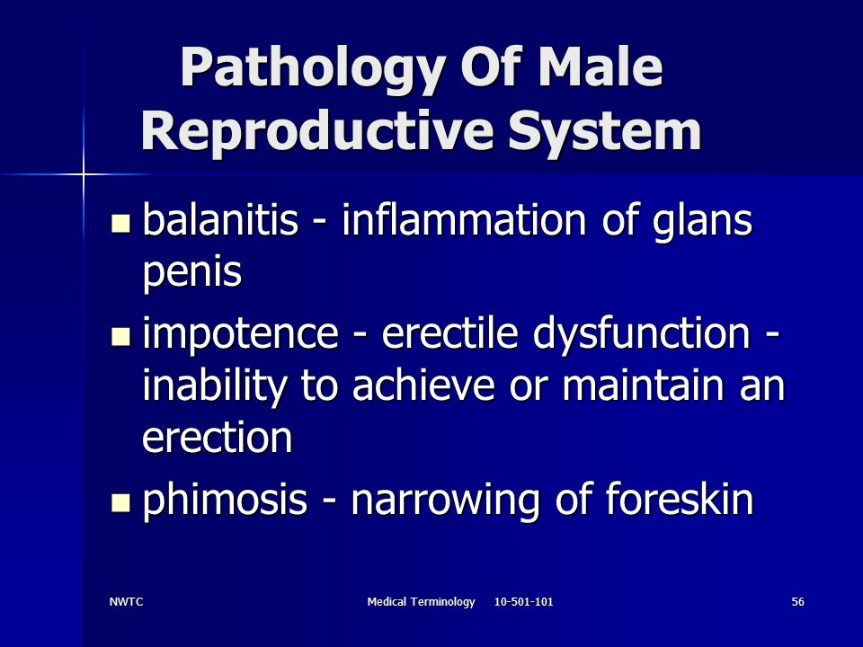 Pathology Of Male Reproductive System