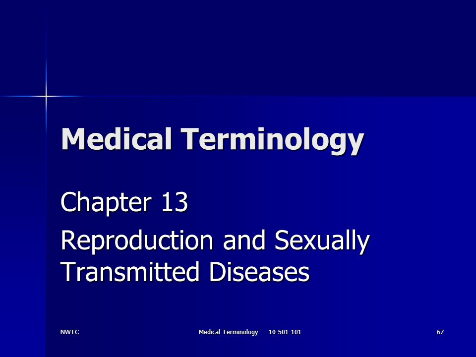 Chapter 13 Reproduction and Sexually Transmitted Diseases