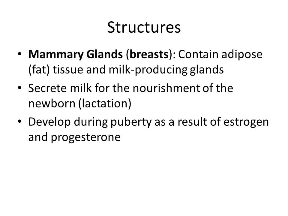 Structures Mammary Glands (breasts): Contain adipose (fat) tissue and milk-producing glands.