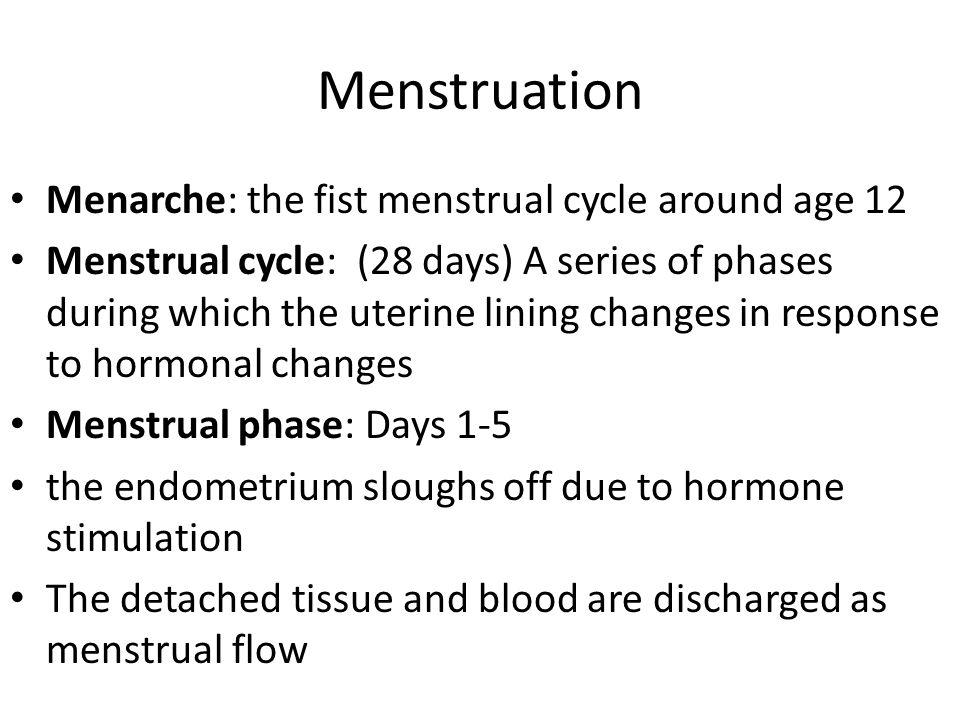 Menstruation Menarche: the fist menstrual cycle around age 12
