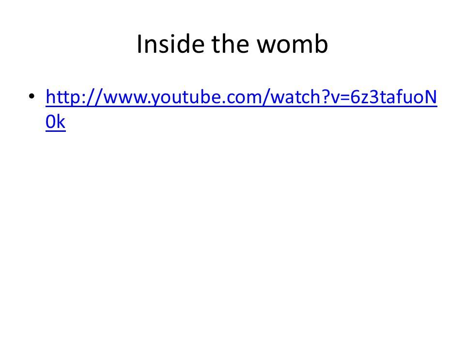 Inside the womb http://www.youtube.com/watch v=6z3tafuoN0k