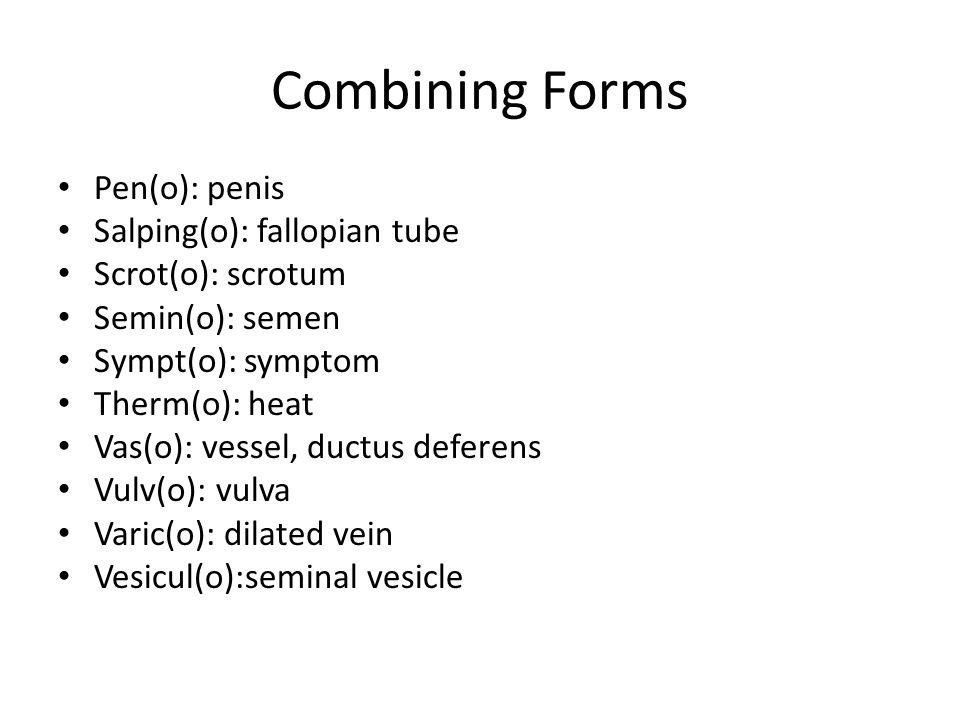 Combining Forms Pen(o): penis Salping(o): fallopian tube