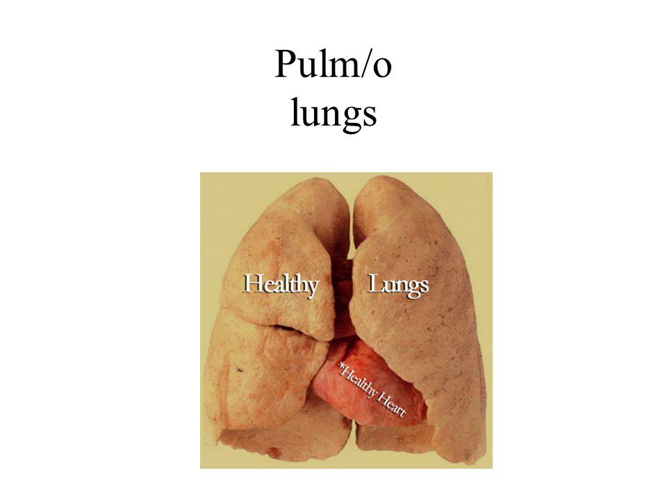 Pulm/o lungs