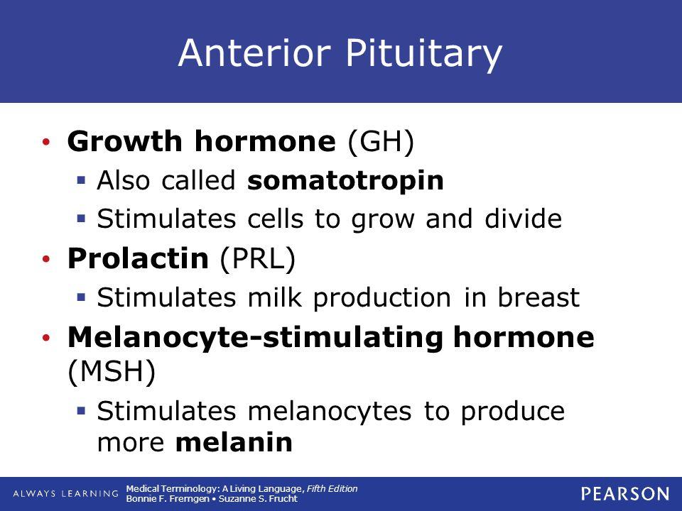 Anterior Pituitary Growth hormone (GH) Prolactin (PRL)