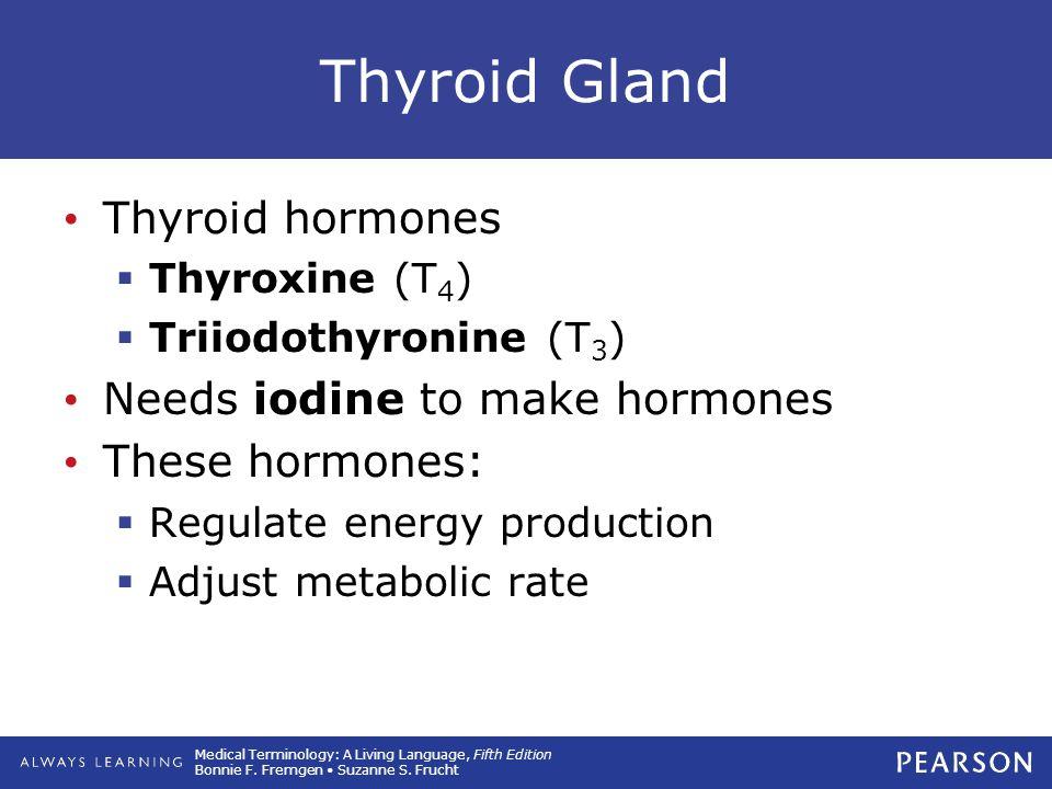 Thyroid Gland Thyroid hormones Needs iodine to make hormones