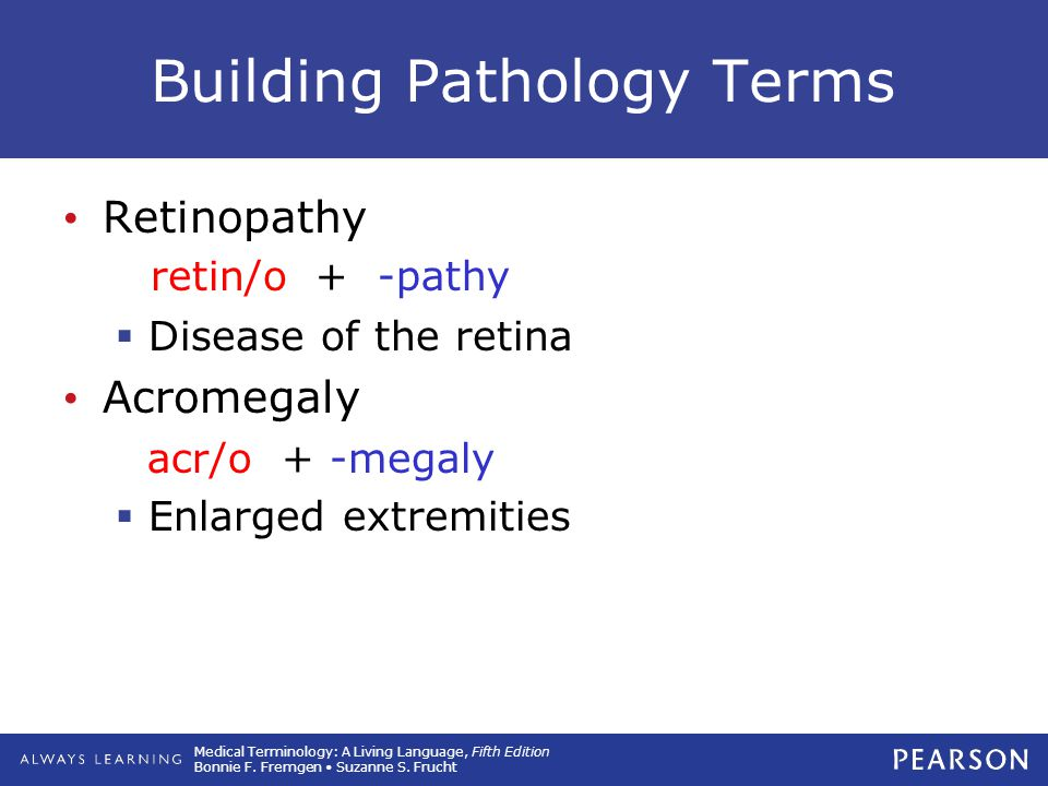 Building Pathology Terms