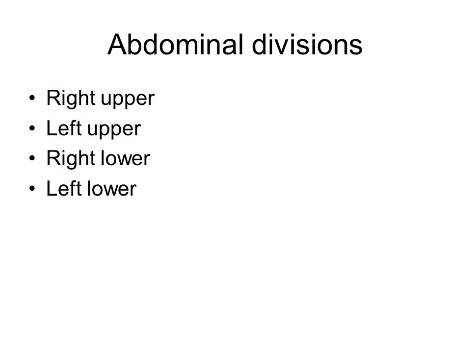Abdominal divisions Right upper Left upper Right lower Left lower