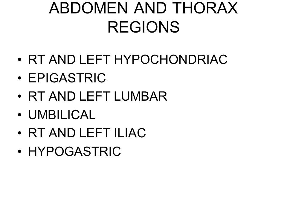 ABDOMEN AND THORAX REGIONS