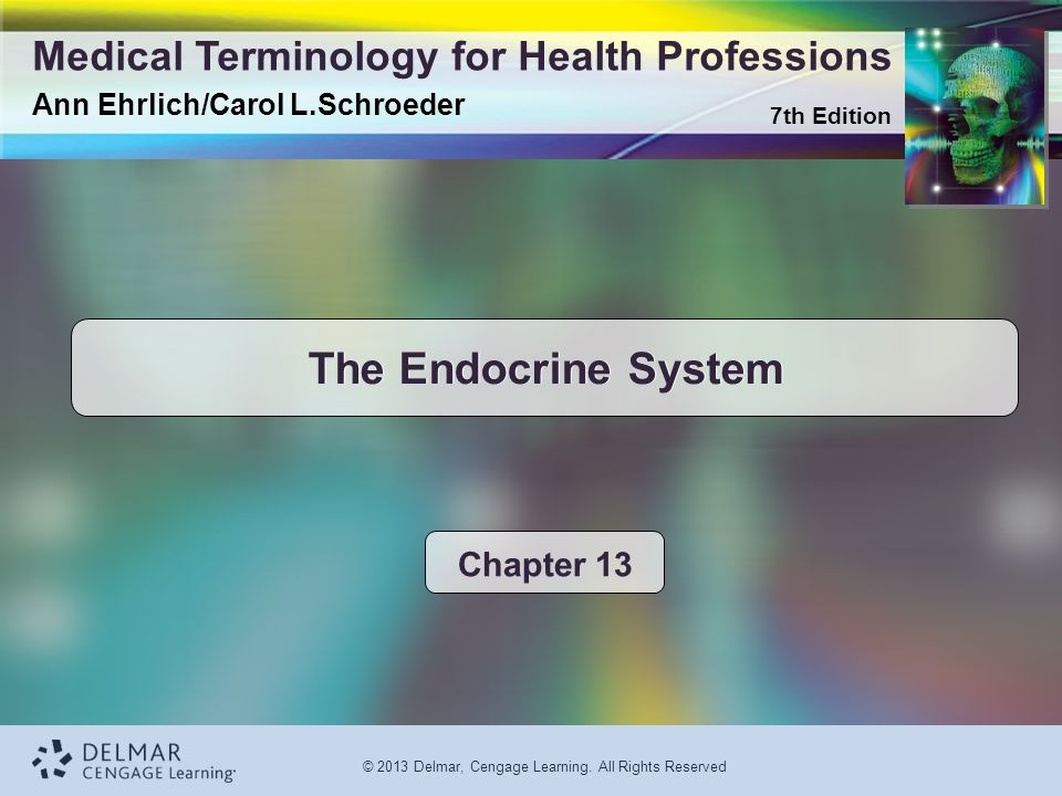 The Endocrine System Chapter 13