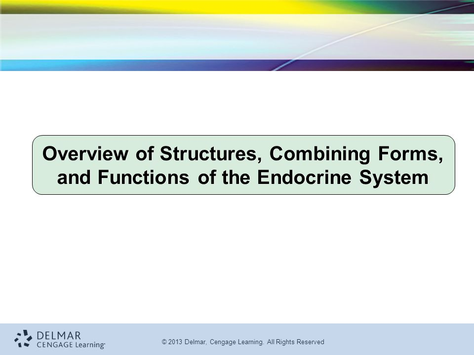 Overview of Structures, Combining Forms, and Functions of the Endocrine System