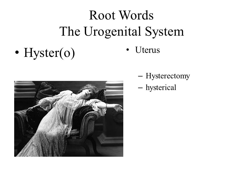 Root Words The Urogenital System