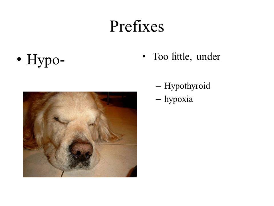 Prefixes Hypo- Too little, under Hypothyroid hypoxia
