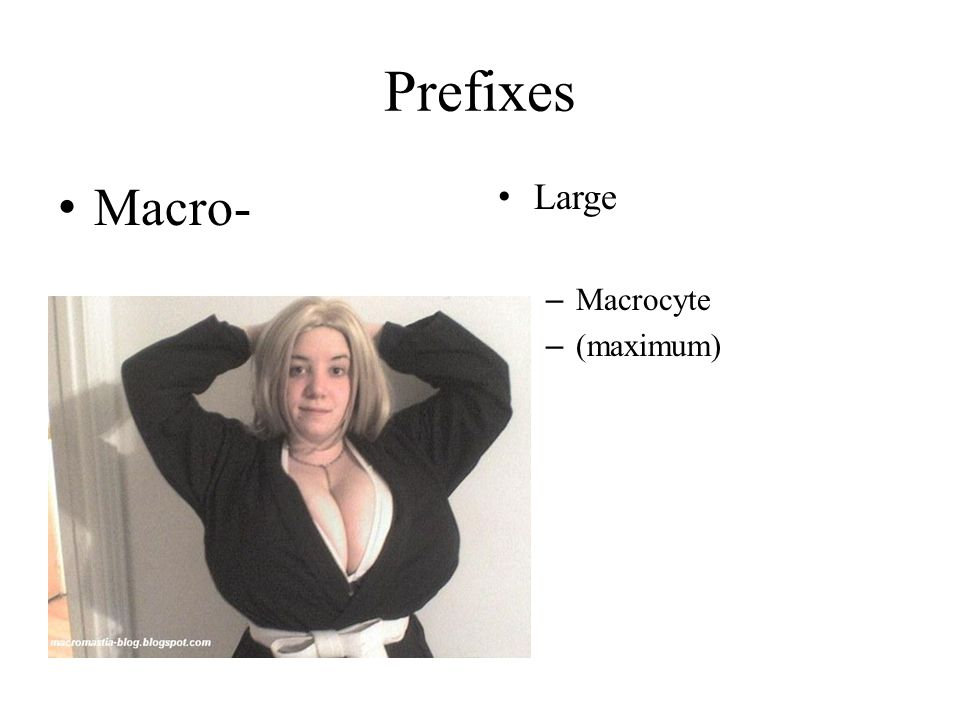 Prefixes Macro- Large Macrocyte (maximum)