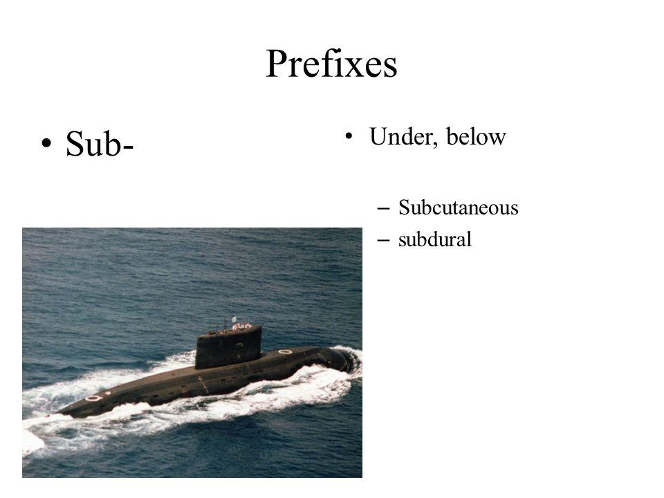 Prefixes Sub- Under, below Subcutaneous subdural