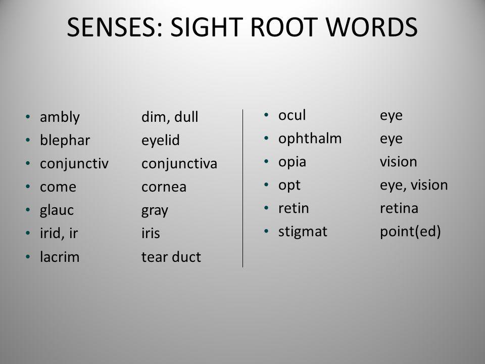 SENSES: SIGHT ROOT WORDS