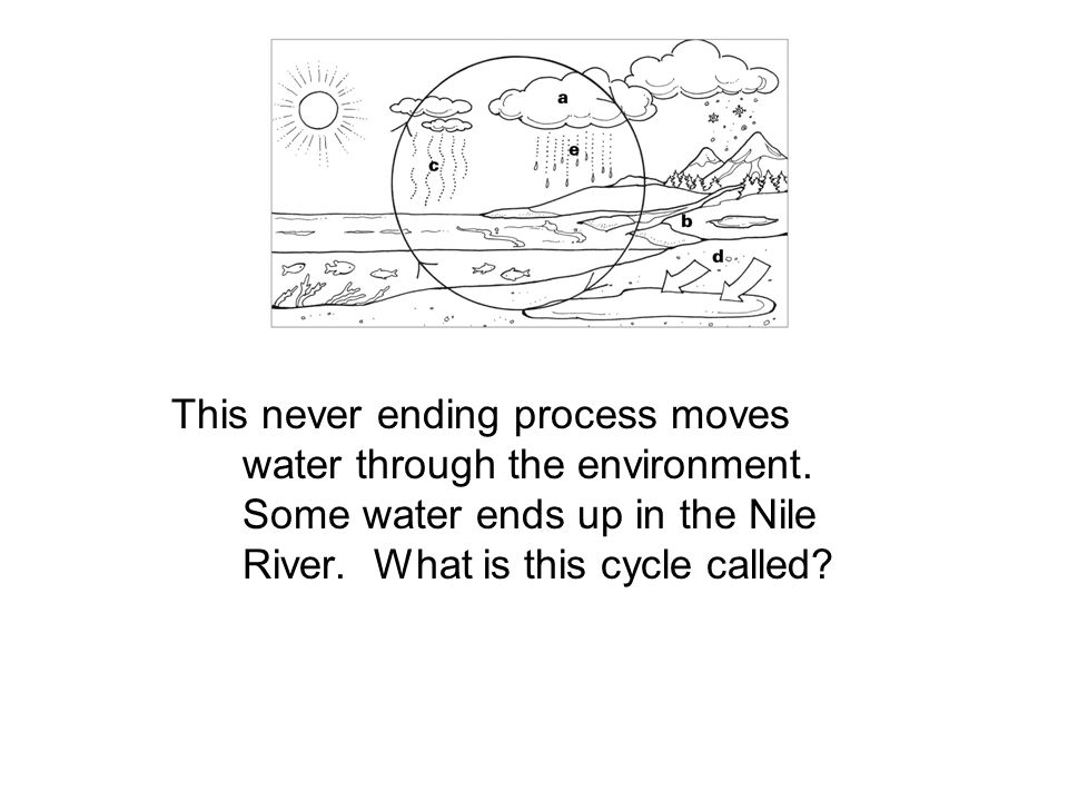 This never ending process moves water through the environment