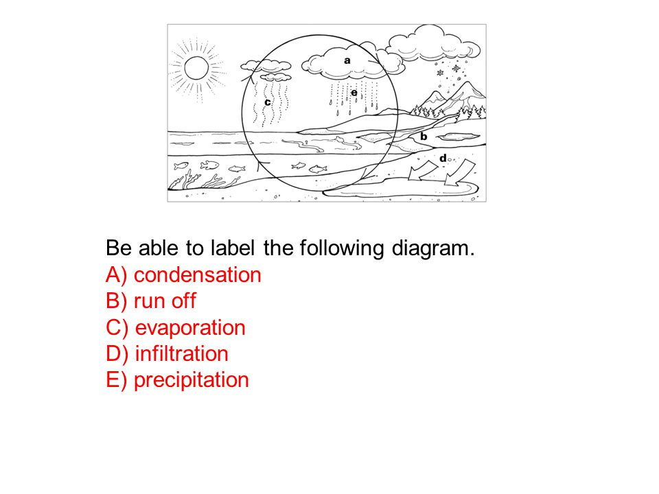 Be able to label the following diagram.
