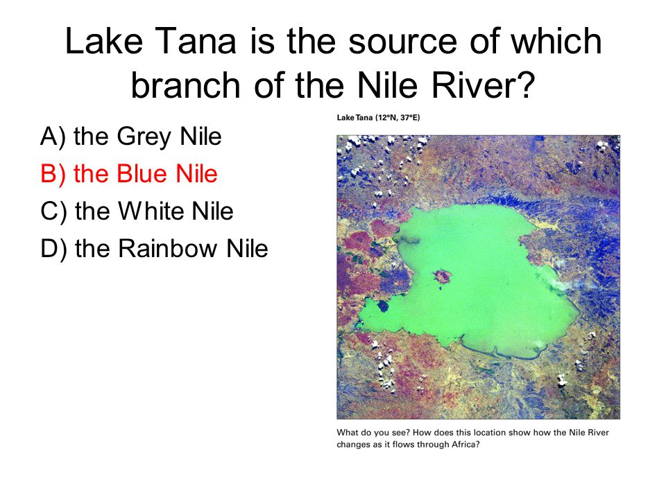 Lake Tana is the source of which branch of the Nile River