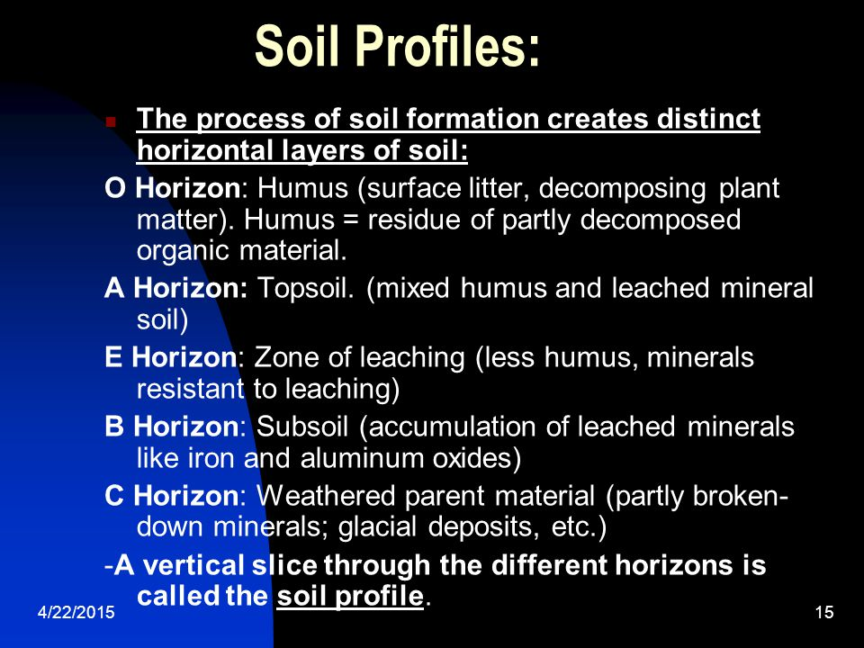 Soil Profiles: The process of soil formation creates distinct horizontal layers of soil: