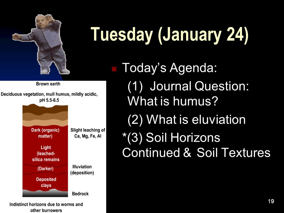 Tuesday (January 24) Today's Agenda: