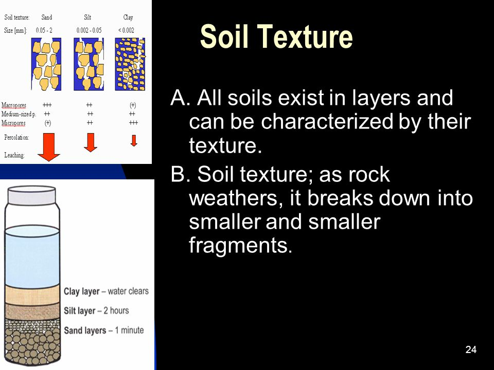 Soil Texture A. All soils exist in layers and can be characterized by their texture.