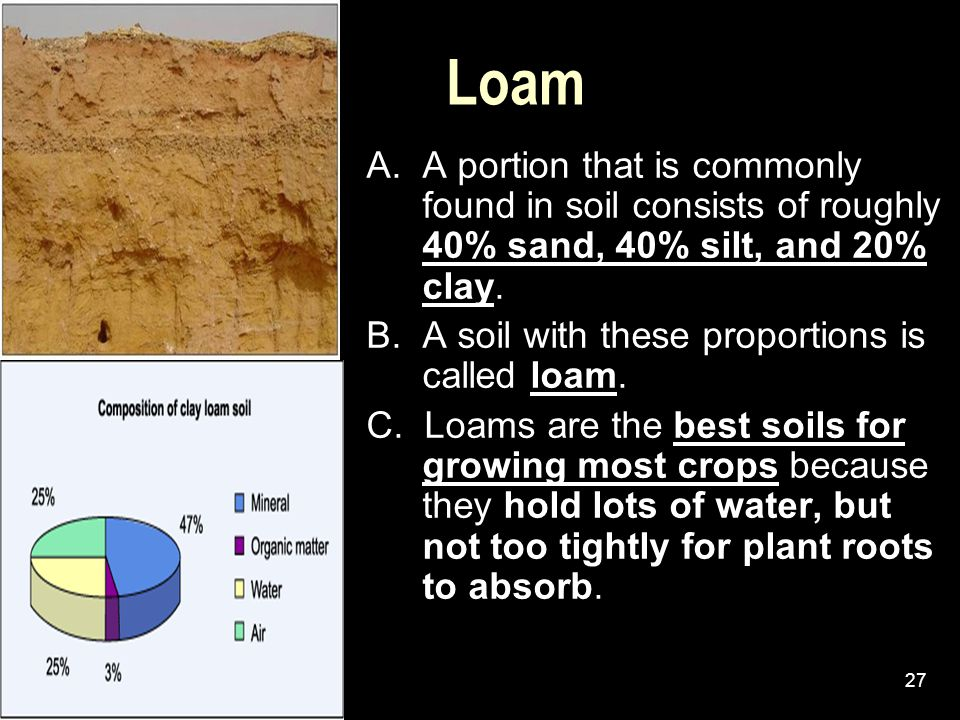 Loam A. A portion that is commonly found in soil consists of roughly 40% sand, 40% silt, and 20% clay.