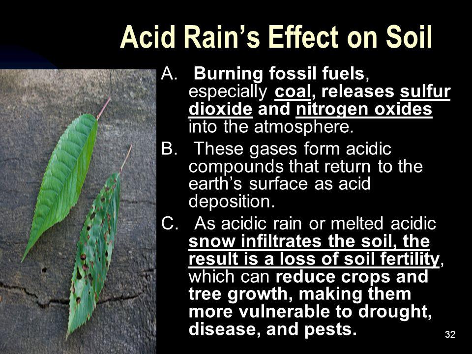 Acid Rain's Effect on Soil