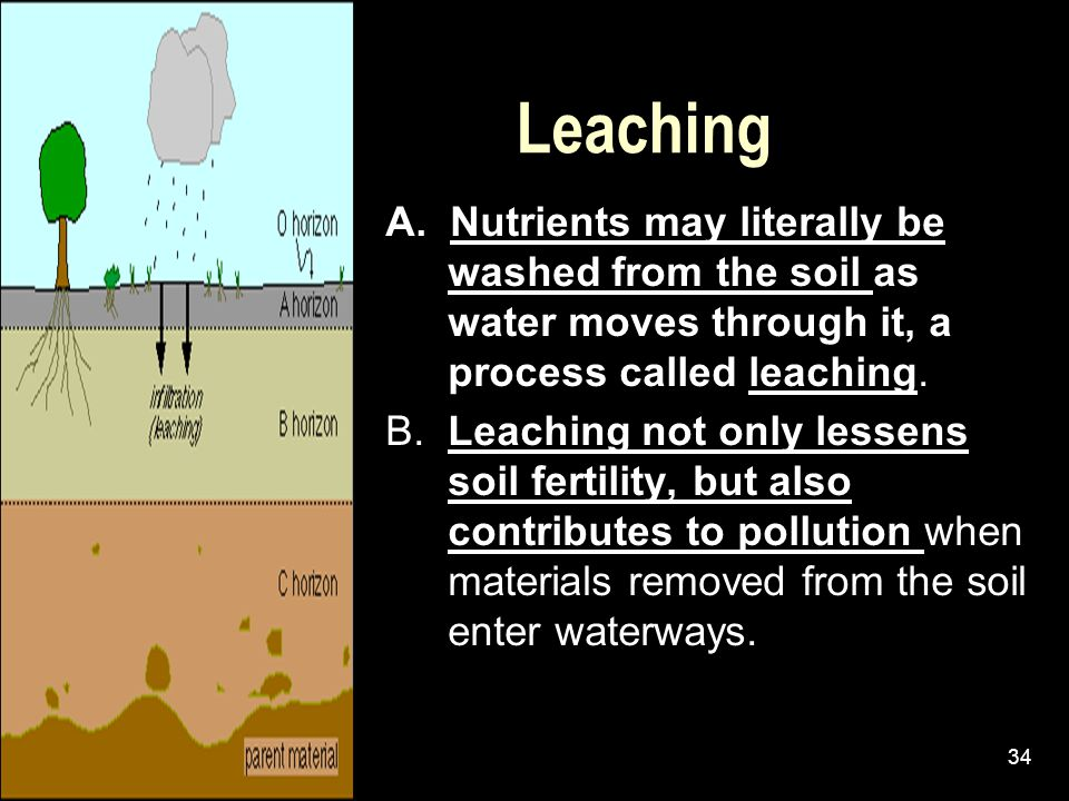 Leaching A. Nutrients may literally be washed from the soil as water moves through it, a process called leaching.