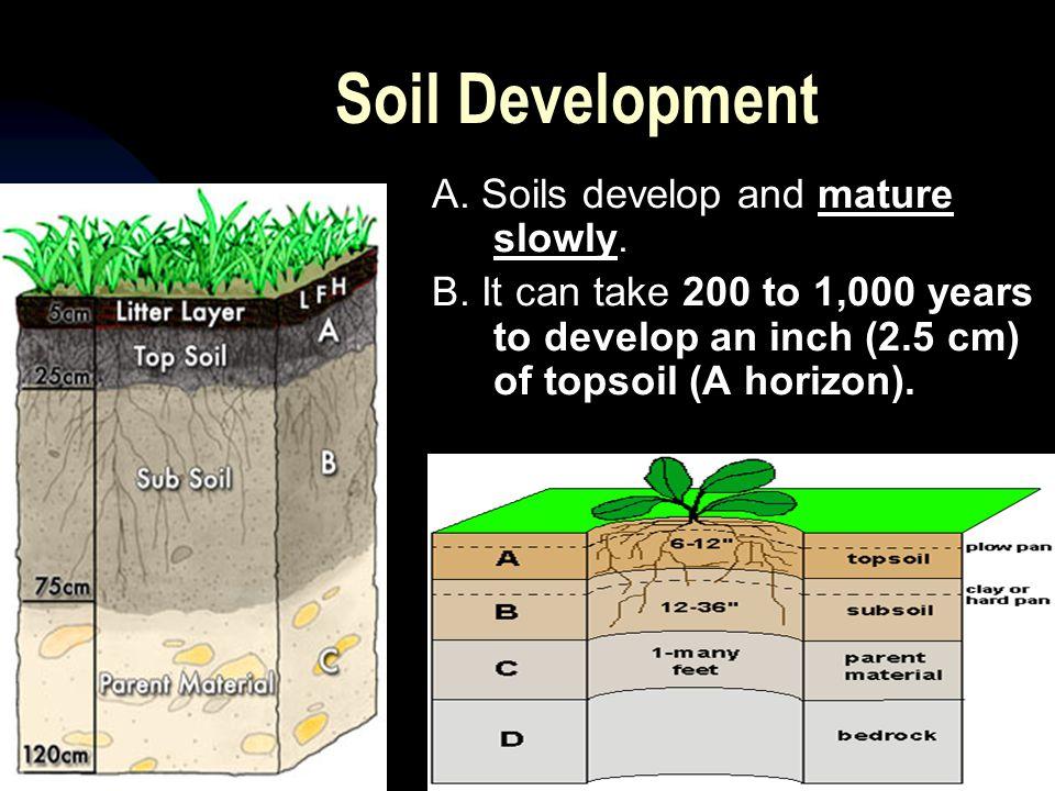 Soil Development A. Soils develop and mature slowly.