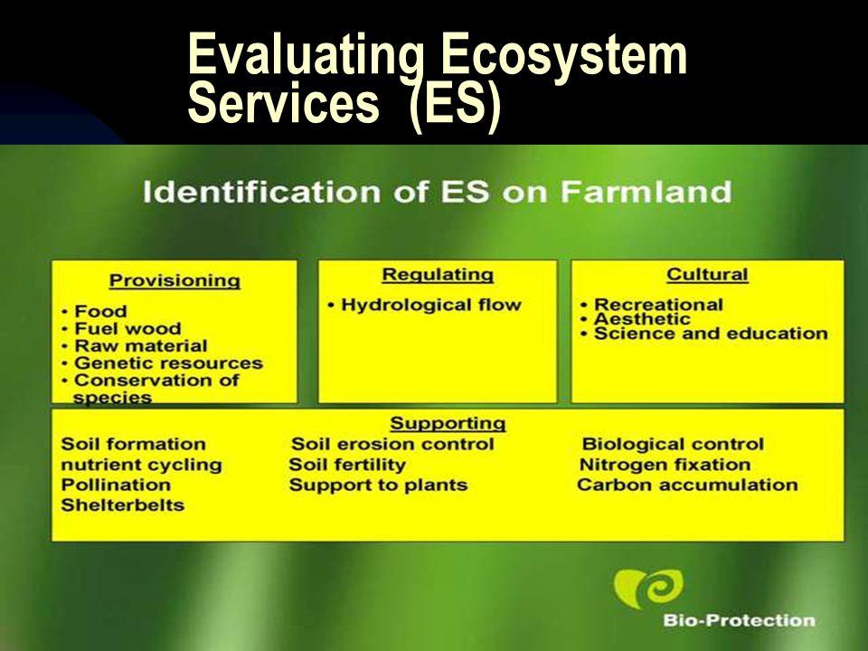 Evaluating Ecosystem Services (ES)