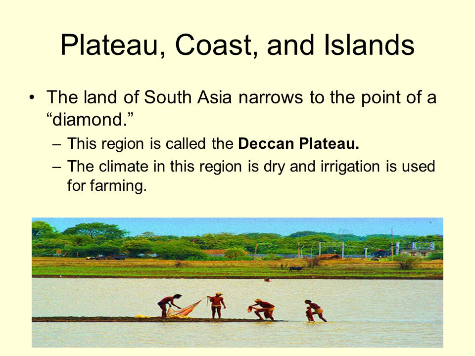 Plateau, Coast, and Islands