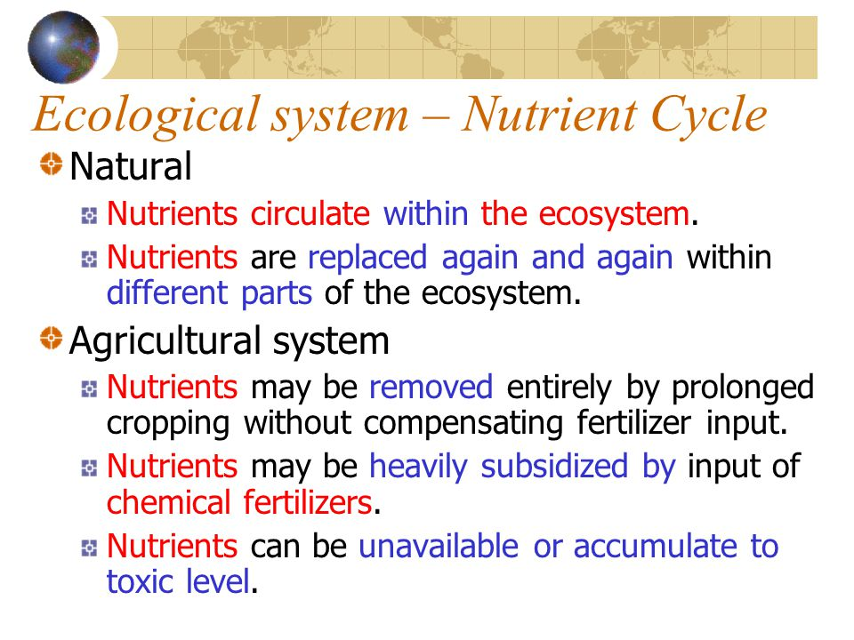 Ecological system – Nutrient Cycle