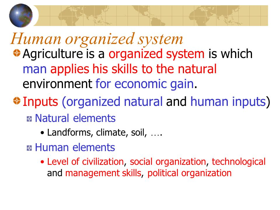 Human organized system