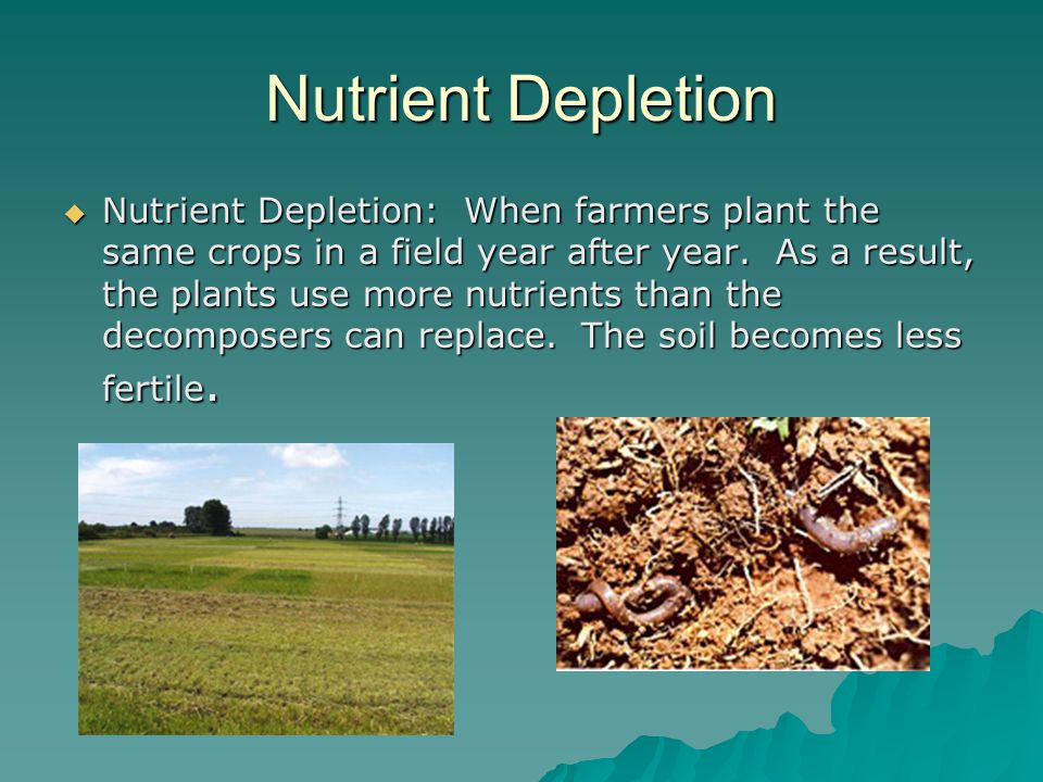 Nutrient Depletion