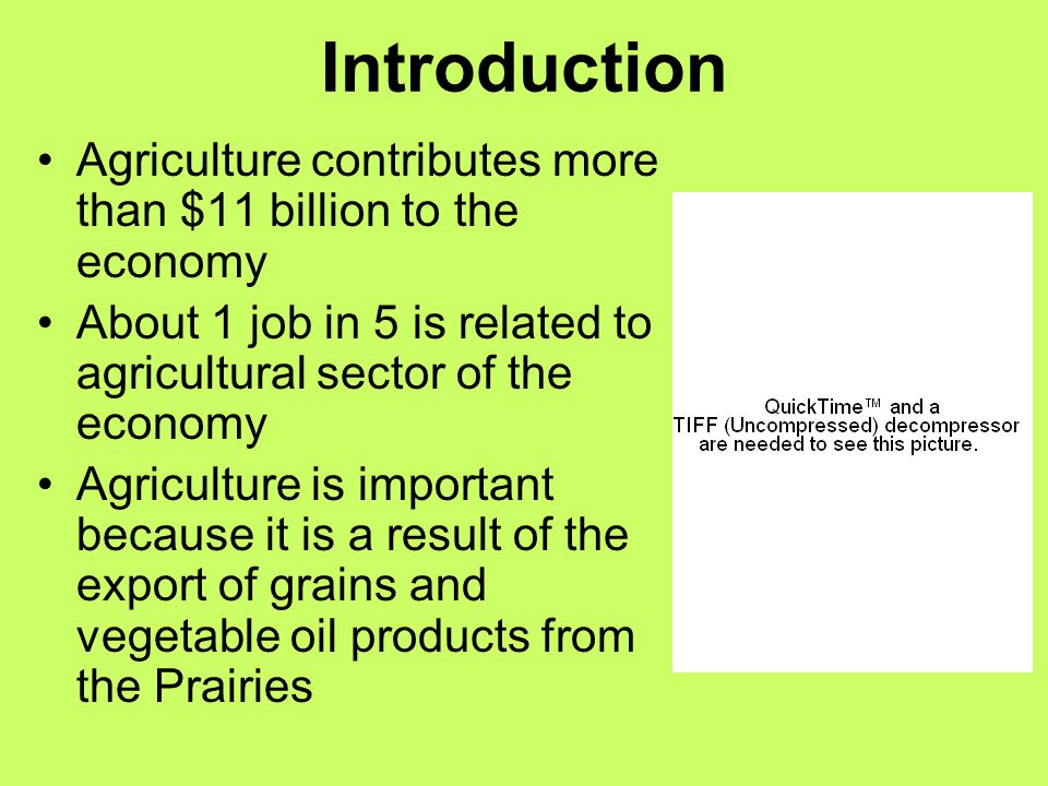 Introduction Agriculture contributes more than $11 billion to the economy. About 1 job in 5 is related to agricultural sector of the economy.