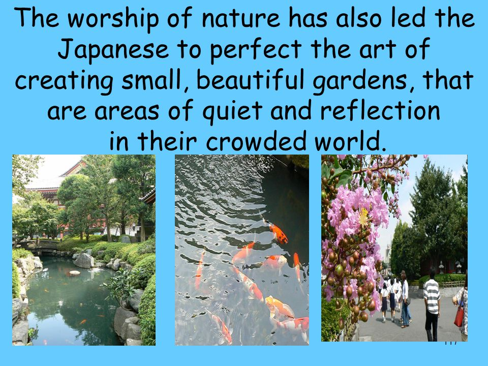 The worship of nature has also led the Japanese to perfect the art of creating small, beautiful gardens, that are areas of quiet and reflection in their crowded world.
