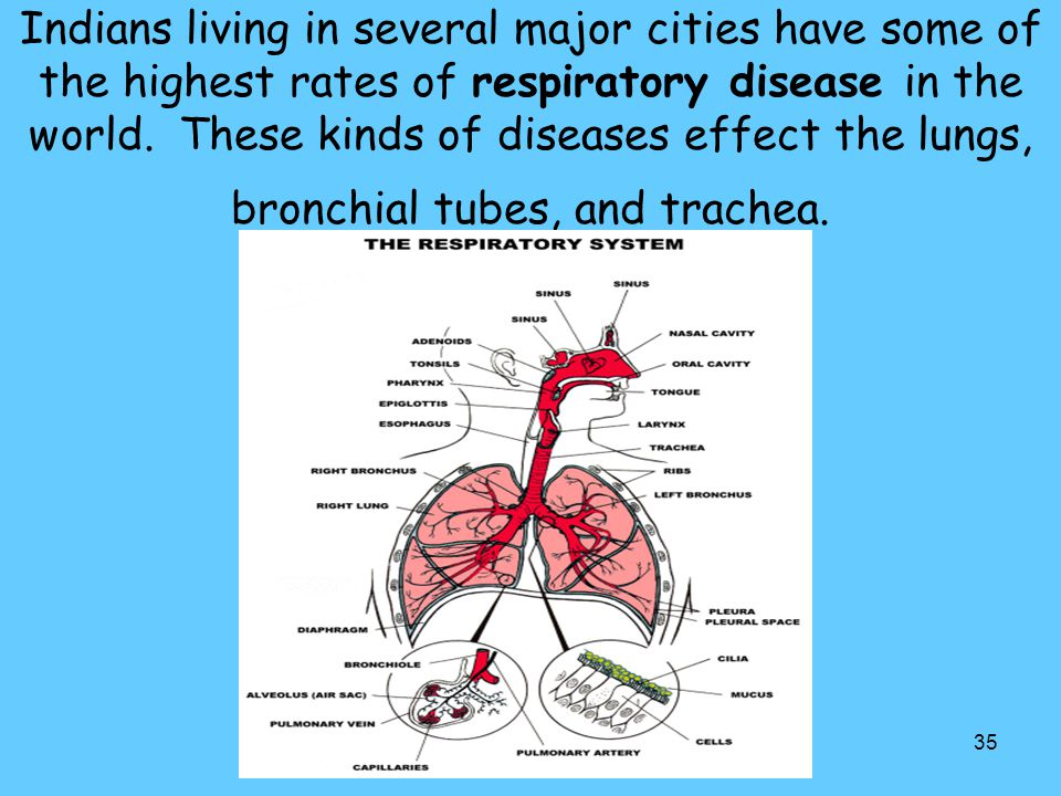 Indians living in several major cities have some of the highest rates of respiratory disease in the world.
