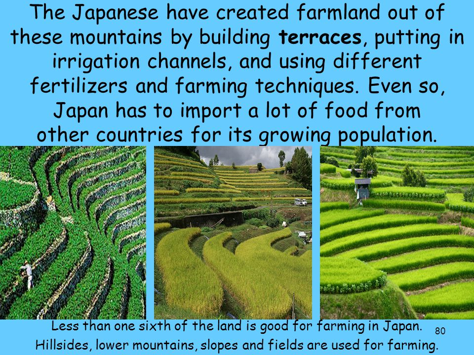 The Japanese have created farmland out of these mountains by building terraces, putting in irrigation channels, and using different fertilizers and farming techniques. Even so, Japan has to import a lot of food from other countries for its growing population.