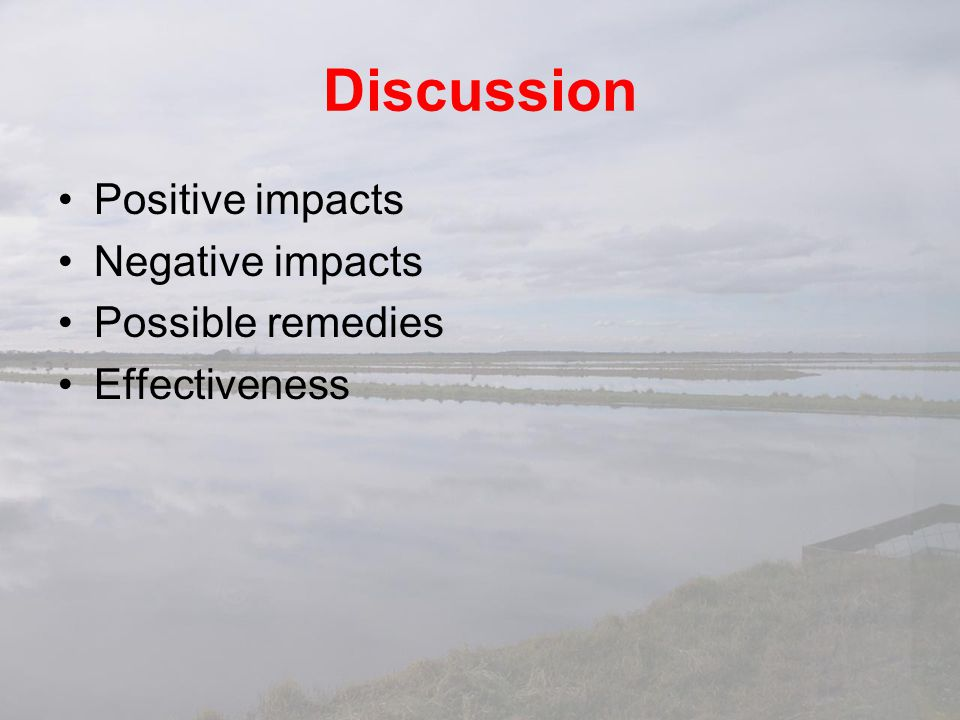 Discussion Positive impacts Negative impacts Possible remedies
