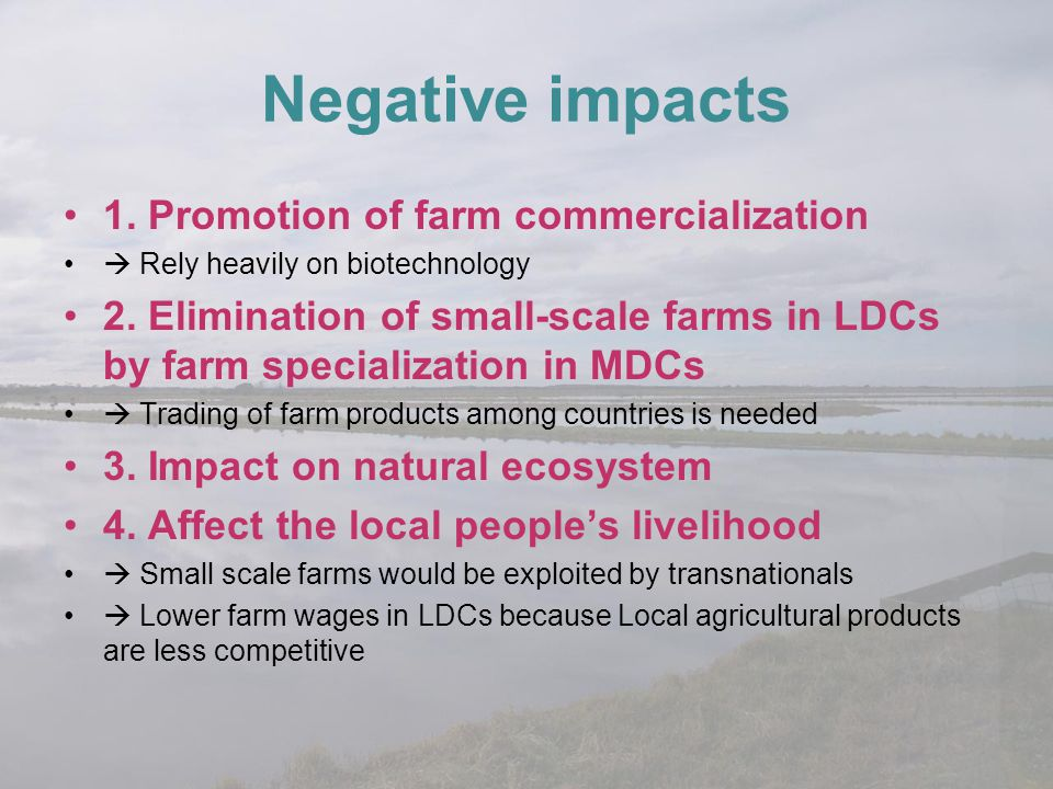 Negative impacts 1. Promotion of farm commercialization